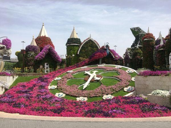 Dubai Miracle Garden relógio de flores em Dubai - Dez Mil Milhas